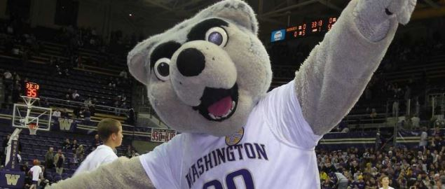 Harry the Husky at a Basketball Game.